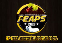 Feaps 2013